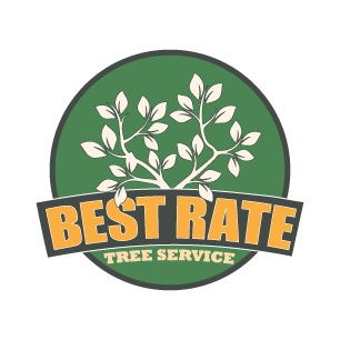 Best Rate Tree